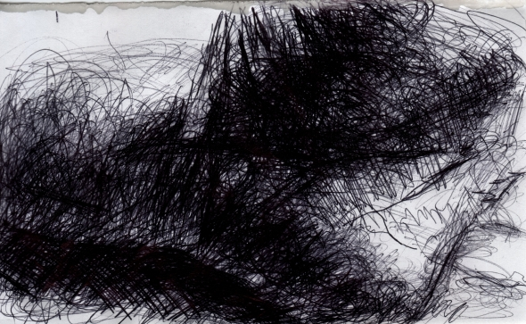 Palm © 2011 Jeff Thomann